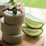 Fabrication du savon à l'aloe vera pour les peaux sensibles